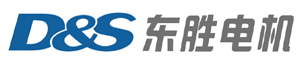 Wuxi D&S Motor Technology Co., Ltd.